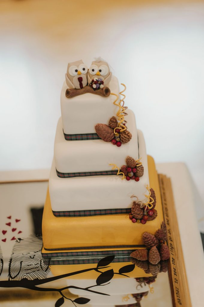 wedding cake with owls on top