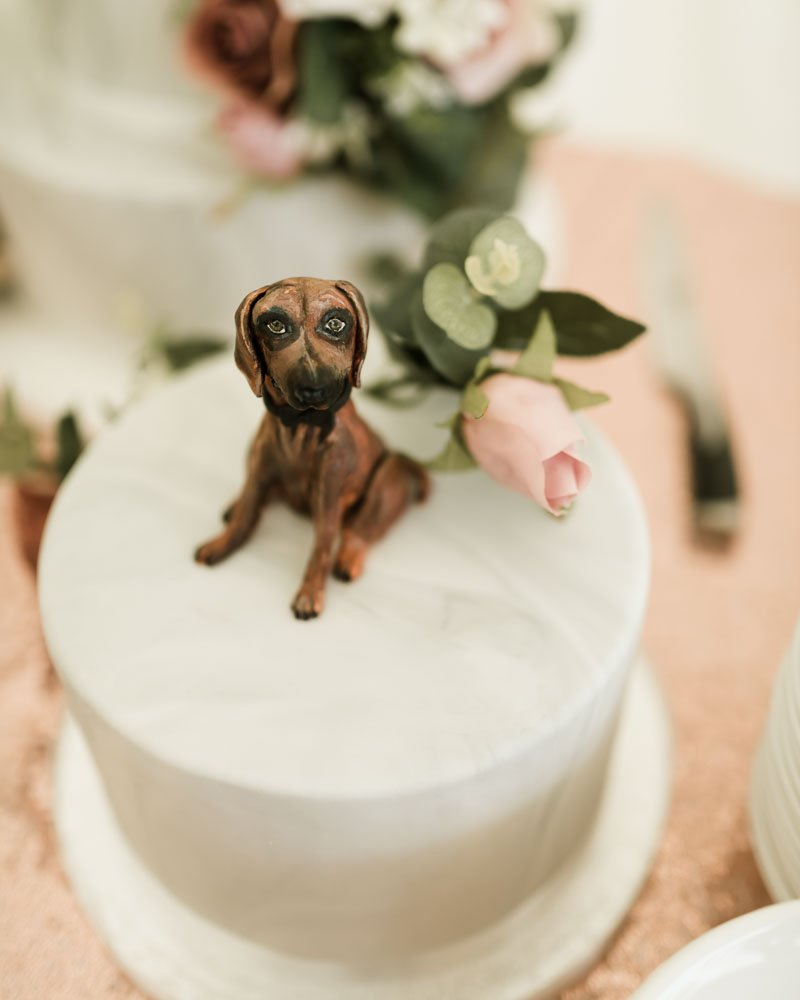wedding cake with a dog on top